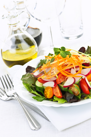 Garden salad stock photo, Plate of healthy green garden salad with fresh vegetables by Elena Elisseeva