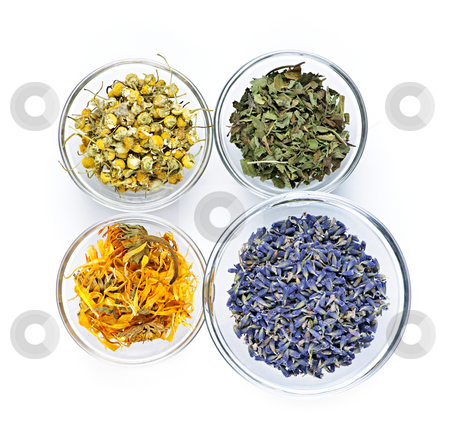 Dried medicinal herbs stock photo, Bowls of dry medicinal herbs on white background from above by Elena Elisseeva