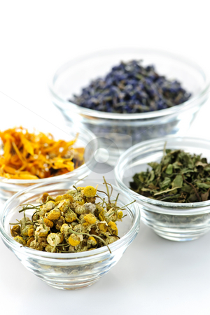 Dried medicinal herbs stock photo, Bowls of dry medicinal herbs on white background by Elena Elisseeva