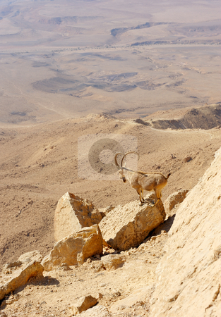 Makhtesh Ramon stock photo, Makhtesh Ramon, unique crater in Israel, a top view by Vladimir Blinov