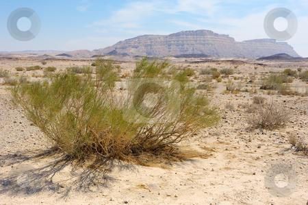 Makhtesh Ramon, Negev desert stock photo, Makhtesh Ramon, unique crater in Negev desert, Israel by Vladimir Blinov