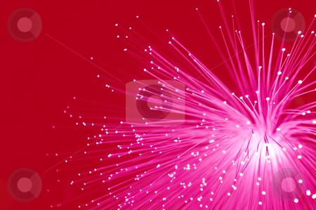 Vivid red fibre optics. stock photo, Abstract style close up capturing bright pink illuminated fibre optic light strands against a bright red background. by Samantha Craddock