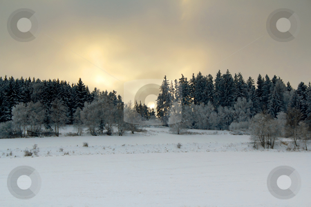 Winter landscape with sunset over frozen trees  stock photo, Winter landscape with sunset over frozen trees by Artush