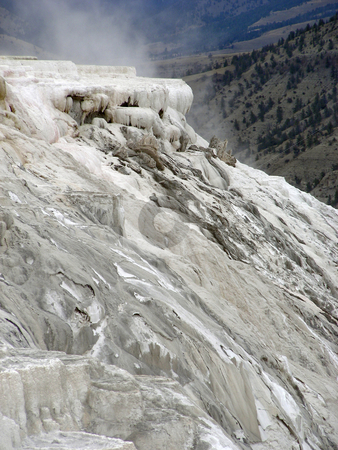 Mammoth Springs stock photo, Sulfur cliffs and steam, Mammoth Hot Springs, Yellowstone, Wyoming. by Mary Lane