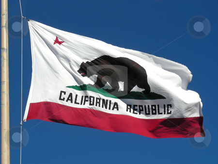 California Flag stock photo, The great bear on the California flag. by Mary Lane