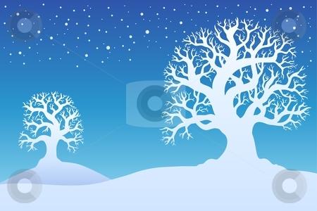 Two winter trees with snow 1 stock vector clipart, Two winter trees with snow 1 - vector illustration. by Klara Viskova