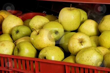Red box with fresh green apples stock photo, Red box with fresh green apples ready for market by caimacanul