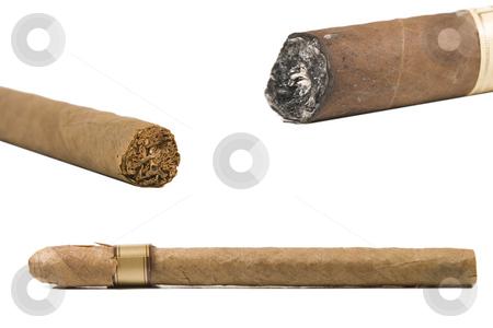 Various types of brown cigar stock photo, Various types of brown cigar on white background by caimacanul