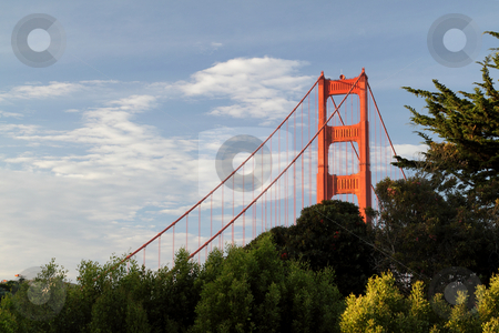 Golden Gate Bridge stock photo, Golden Gate Bridge, San Francisco, United States by Olena Pupirina