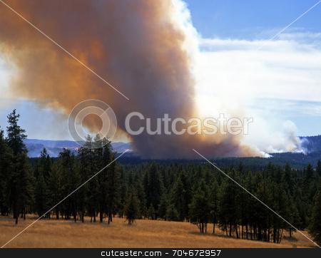 Forest Fire stock photo, A forest fire in Wallowa-Whitman National Forest, Oregon. by Mike Norton