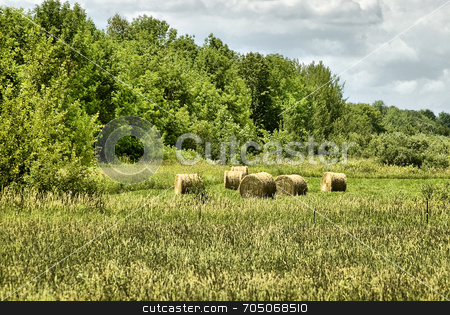 Round Bales in Field stock photo, Round hay bales in a farm field. by J. Gracey Stinson