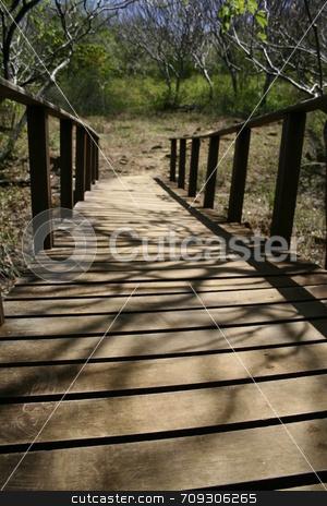Wooden Bridge stock photo, A wooden bridge leading to a path! by Daniel Wiedemann