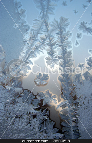 Frost stock photo,  by Marcel Achard