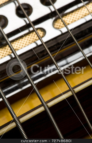 Bridge and strings on an electric guitar stock photo, Detail of bridge & strings on an electric guitar by Jon Stokes