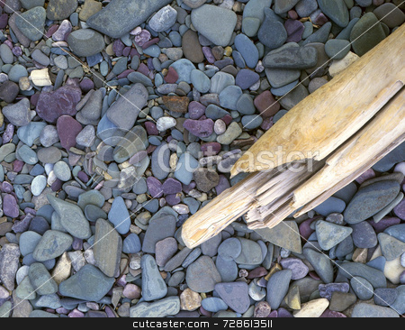 Rocks & Driftwood stock photo, Driftwood on a rocky lakeshore. by Mike Norton
