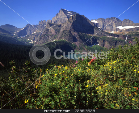 Mt Gould & Flowers stock photo, Mt. Gould and wild flowers in Glacier National Park, Montana. by Mike Norton
