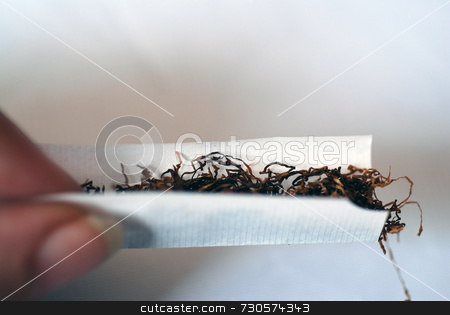 Rolling a Cigarette stock photo, A close-up of a cigarette being rolled by Philippa Willitts