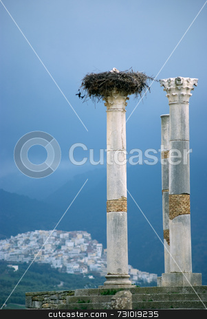 Stork Nest On A Roman Column stock photo, Stork Nest on a Roman Column in Volubilis Morocco Moulay-Idriss in the Background by Jan-Peter Von Hunnius
