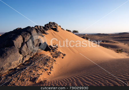 Solidified Lava Stones In Sand Dune stock photo, Solidified Black Lava Stones in Sand Dune by Jan-Peter Von Hunnius