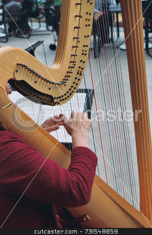 Hands on a harp stock photo, Hands playing a harp at a musical event by Tim Markley