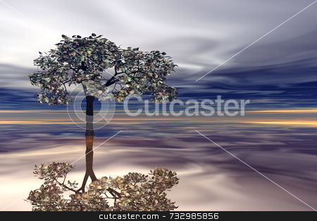 Surreal Tree and Reflection stock photo, High quality 3D render of imaginary tree standing in water with reflection. Grey storm sky with remnants of an orange sunset. by ngirl