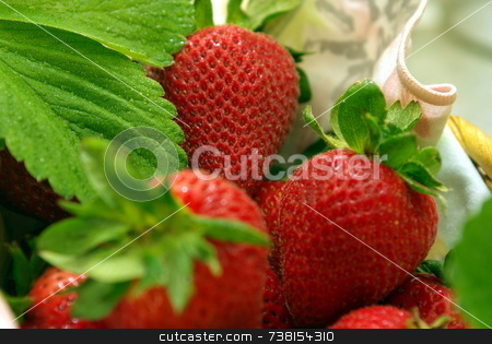 Colorful Strawberries In A Basket stock photo, Fresh picked Strawberries with morning dew on the leaves. by Lynn Bendickson