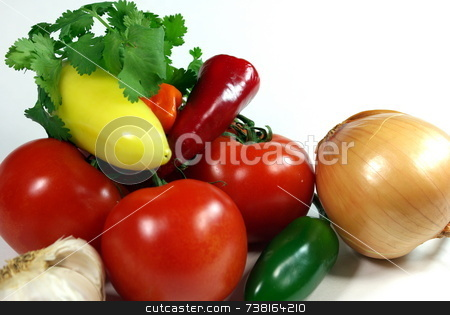 Hot Salsa Ingediants stock photo, All the items needed to make a great Salsa by Lynn Bendickson