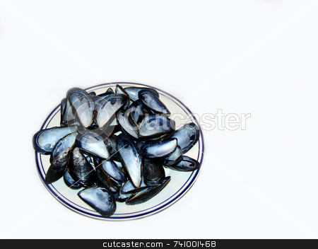 Mussels stock photo, Empty mussel shells on a plate by Jack Schiffer