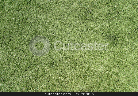 Green Lawn 6478 stock photo, Green lawn on a sports field for football by Henrik Lehnerer