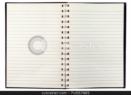 Blank discolored pages in an old notebook. stock photo, Blank discolored pages in an old notebook. by Stephen Rees