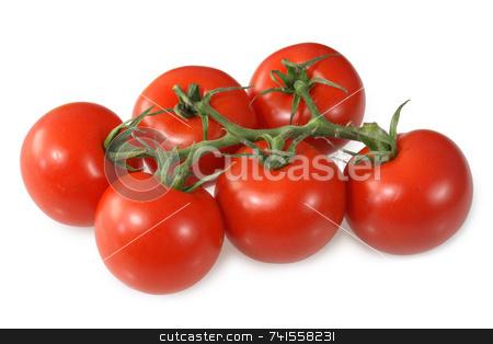 Red vine ripened British tomatoes. stock photo, Red vine ripened British tomatoes. by Stephen Rees