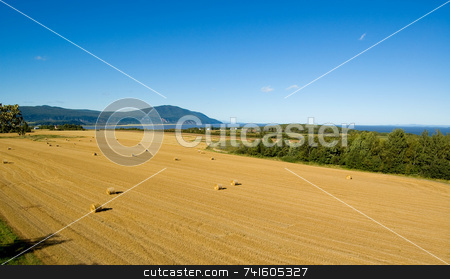 Harvest on orlean island stock photo, Panoramic view of a field on Orlean Island during harvest time autumn. by Jean Larue-Frechette