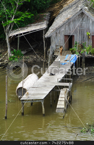 Amazonia Lifestyle stock photo, A small hut next to the Amazon River. by Daniel Wiedemann