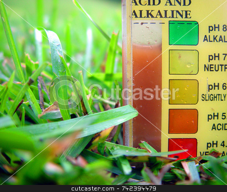 Soil Tester stock photo, Testing soil for ph and nutrient content off garden or lawn for better growth by Jack Schiffer