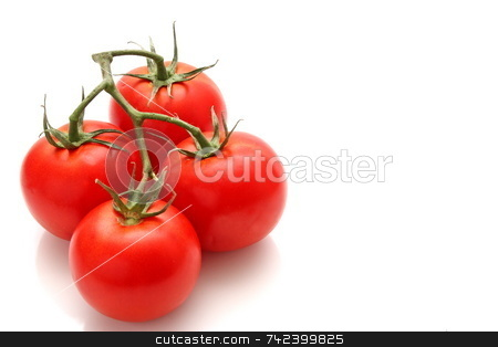 Vine Ripe Tomato stock photo, Tomatoes freshly picked off the vine by Jack Schiffer