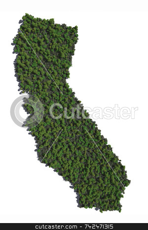 California in Trees stock photo,  by Allan Tooley