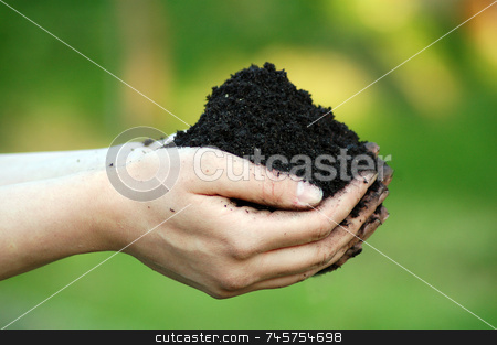 Black dirt in a womans hand stock photo, Dirt held in a womans hand on a blurry green natural background by Zoltan Kiraly