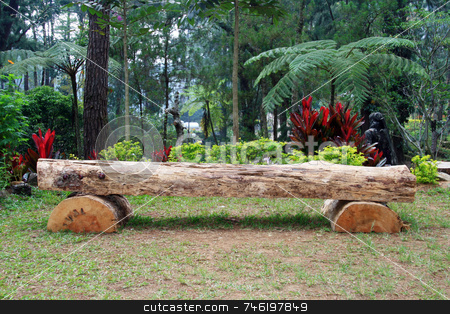 Log bench stock photo, A wooden bench at a botanical garden by Jonas Marcos San Luis