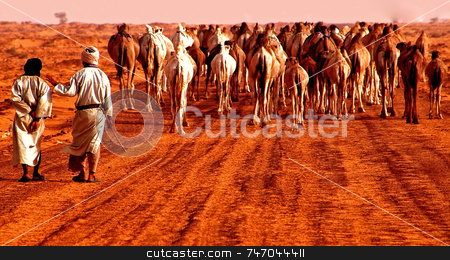 Caravan in the desert stock photo, Caravan in the Sahara desert in Mauritania by Kobby Dagan