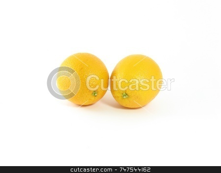 A Couple of Oranges stock photo, Image of 2 oranges that were grown in Florida by Ray Carpenter
