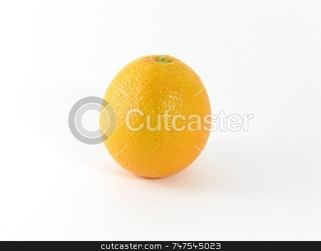 One Orange stock photo, Image of one orange that was grown in Florida. by Ray Carpenter
