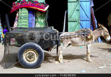 Donkey stock photo, Donnkey with carriage in Mauritania west Africa by Kobby Dagan