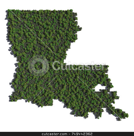Louisiana in Trees stock photo,  by Allan Tooley