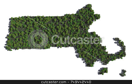 Massachusetts in Trees stock photo,  by Allan Tooley