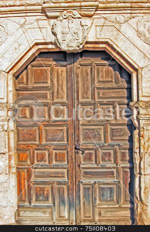 Wood Door stock photo, An old worn wooden door showing the grain of the wood by Kevin Tietz