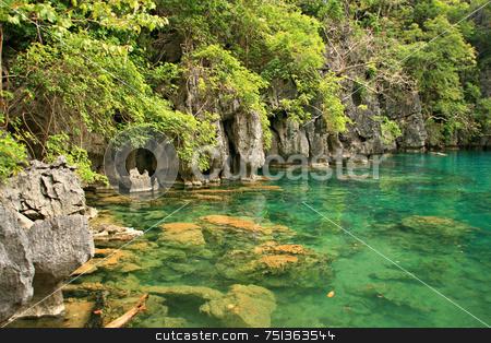 Green lake stock photo, Peaceful and enchanting green lake by Jonas Marcos San Luis