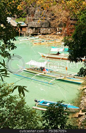 Green lagoon 2 stock photo, Boats docked at a green lagoon by Jonas Marcos San Luis
