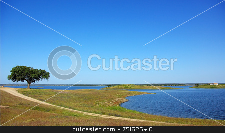 Landscape of Alqueva barrage. stock photo, Landscape of Alqueva barrage, alentejo, Portugal. by Inacio Pires
