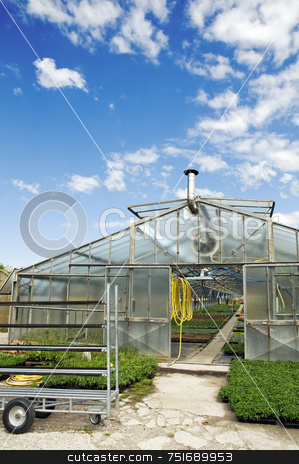 Greenhouse stock photo, External view of a glasshouse against a sky with clouds by Massimiliano Leban