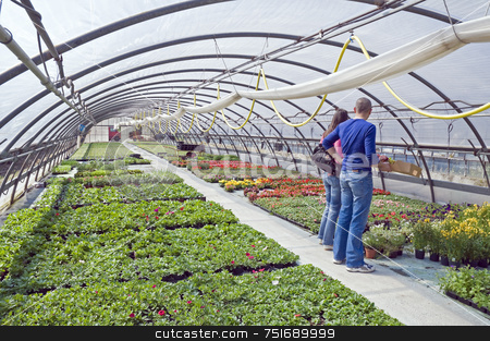 Spring time stock photo, Couple choosing flowers in a greenhouse by Massimiliano Leban
